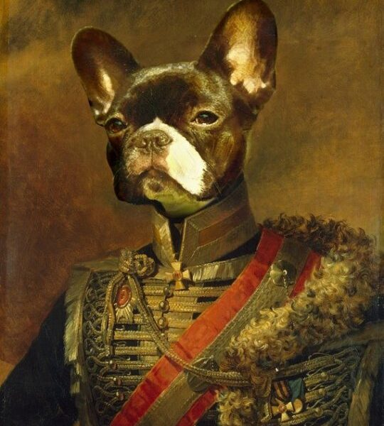 kişiye özel french buldog general