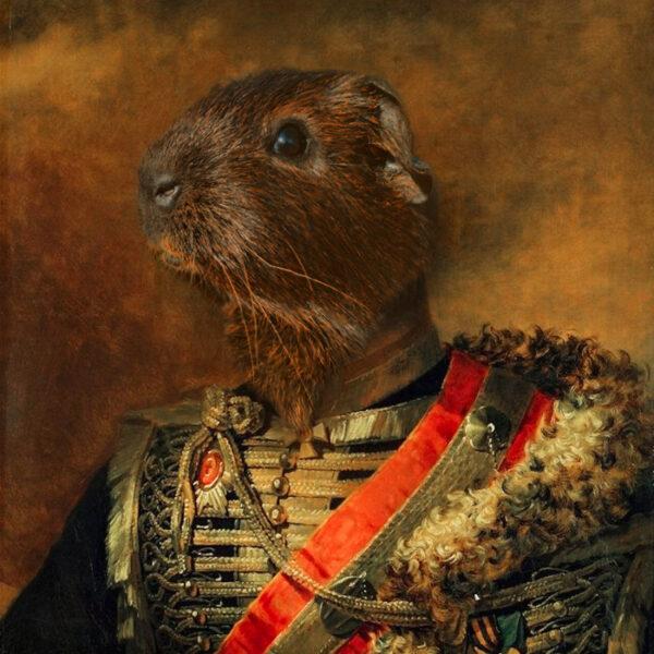 hamster general tasarım