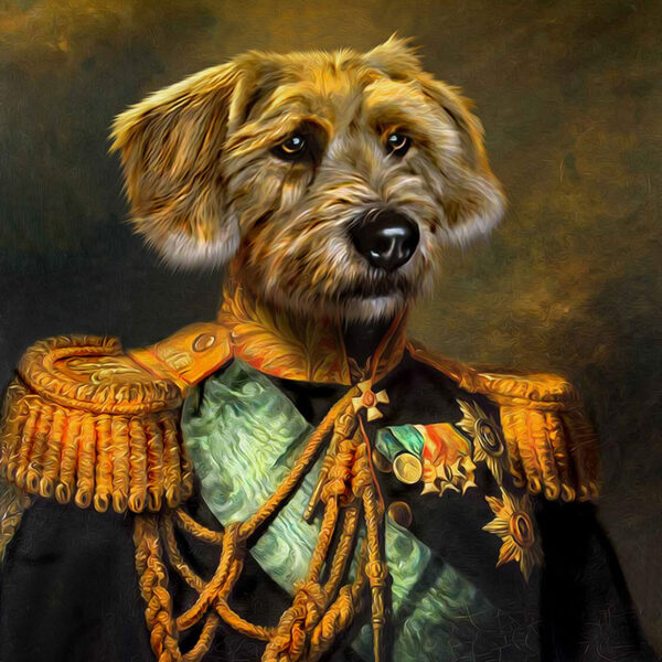 terrier general tablosu