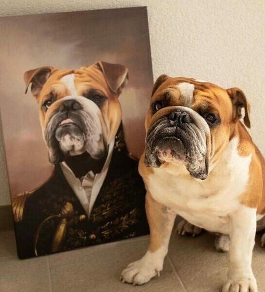 admiral buldog tablosu