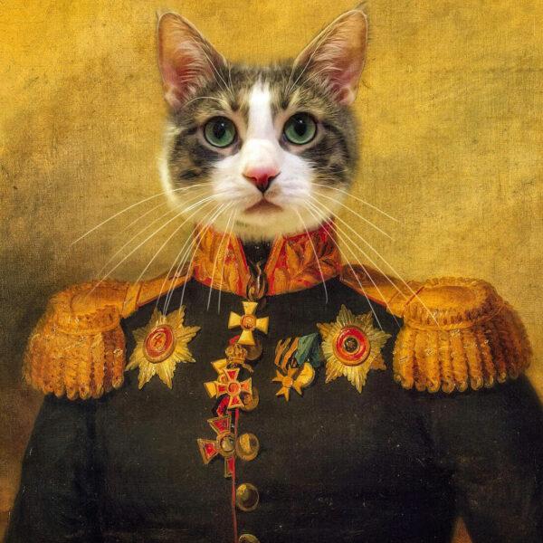 antik rönesans kedi general tasarım