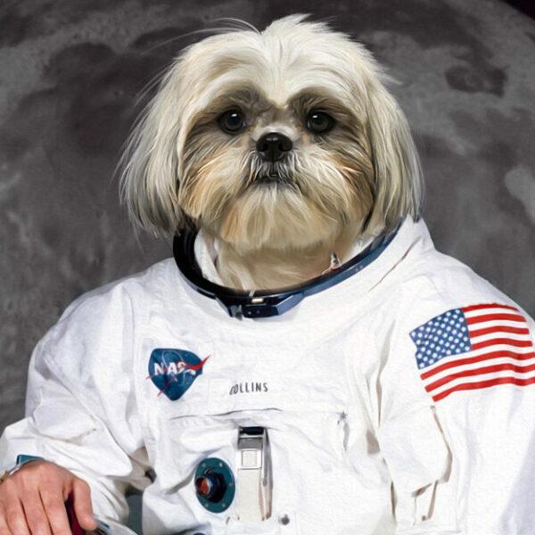 shihtzu köpek astronot kanvas tablo