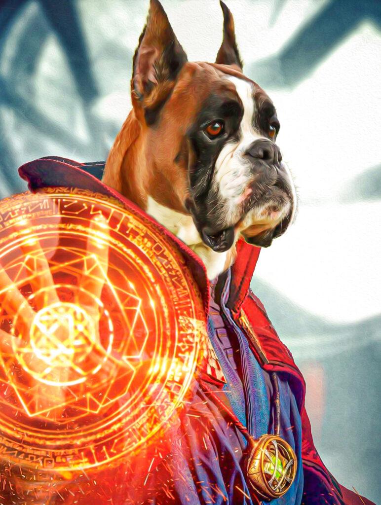 Dr Strange Avengers Pet Tablosu