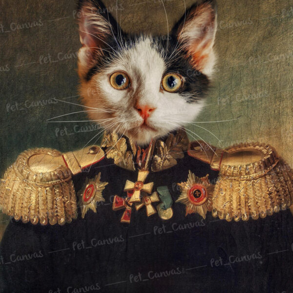 General Kedi Tablosu