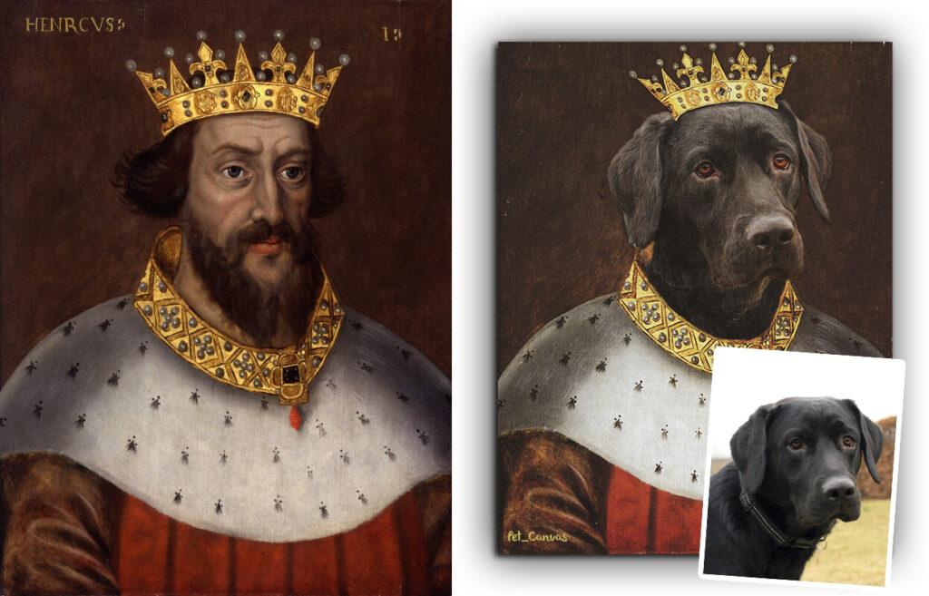 kraliyet taçlı kahverengi labrador portresi
