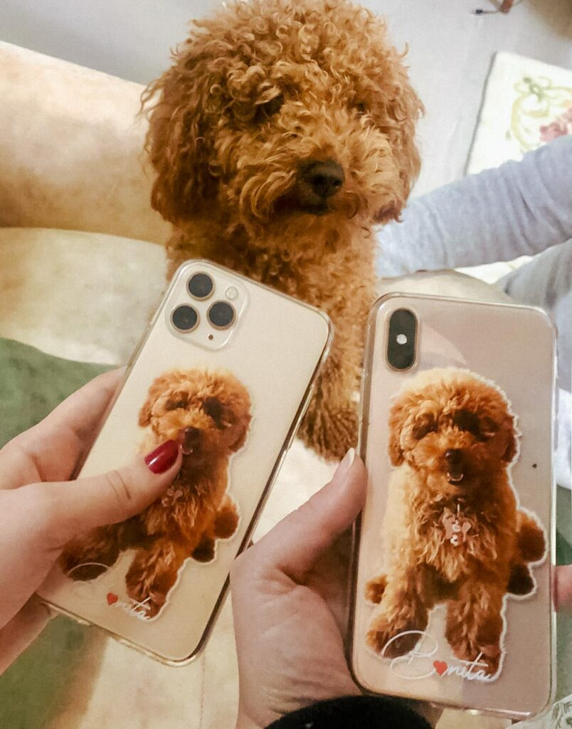 poodle özel tasarımlı telefon kılıfı