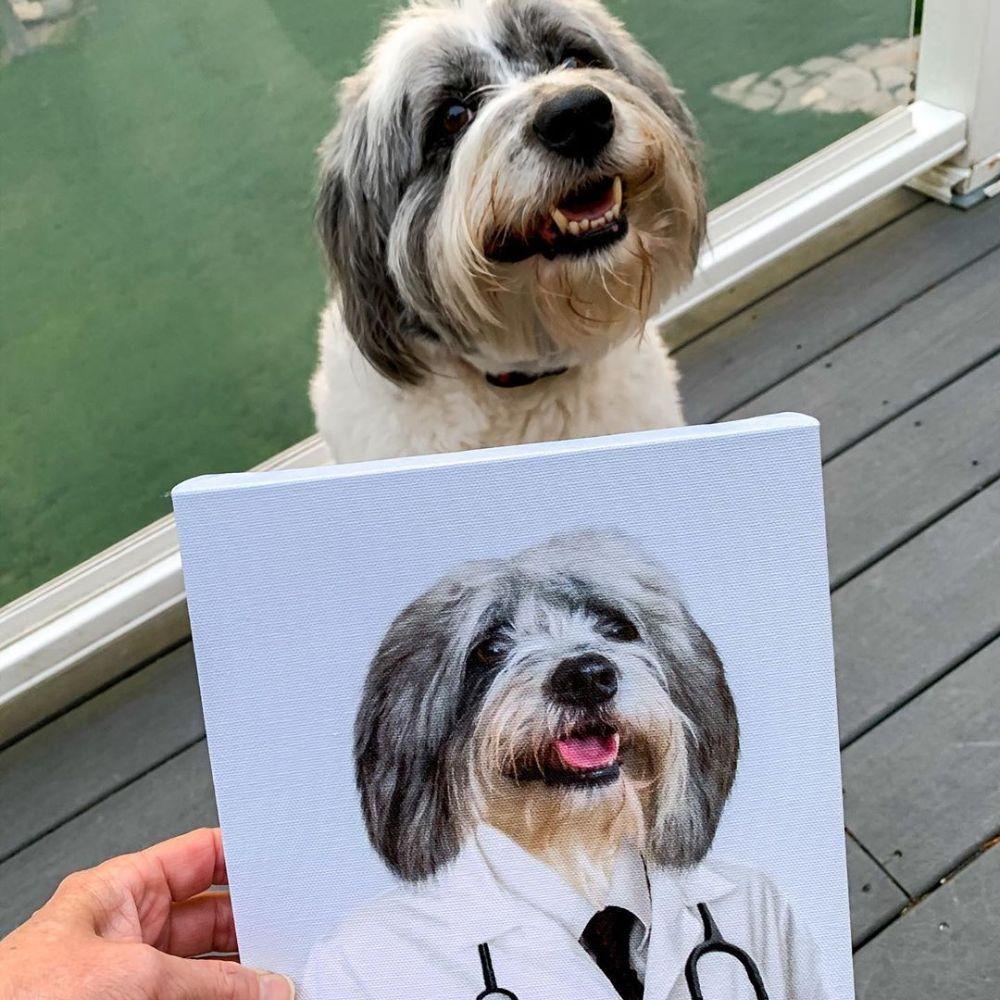 doktor köpek tablo