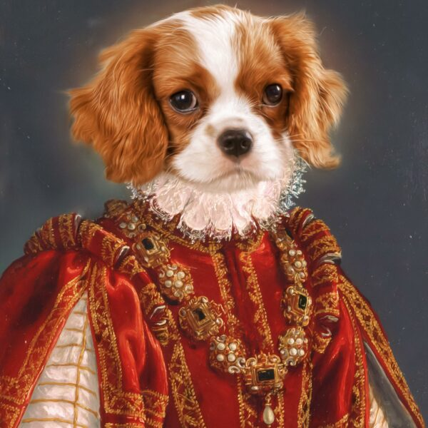 king-cavalier-kırmızı-kralice