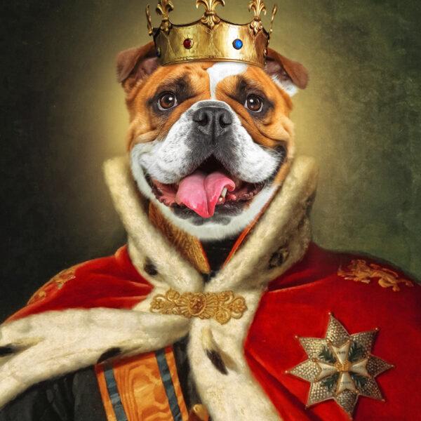 kral kostümlü buldog portre