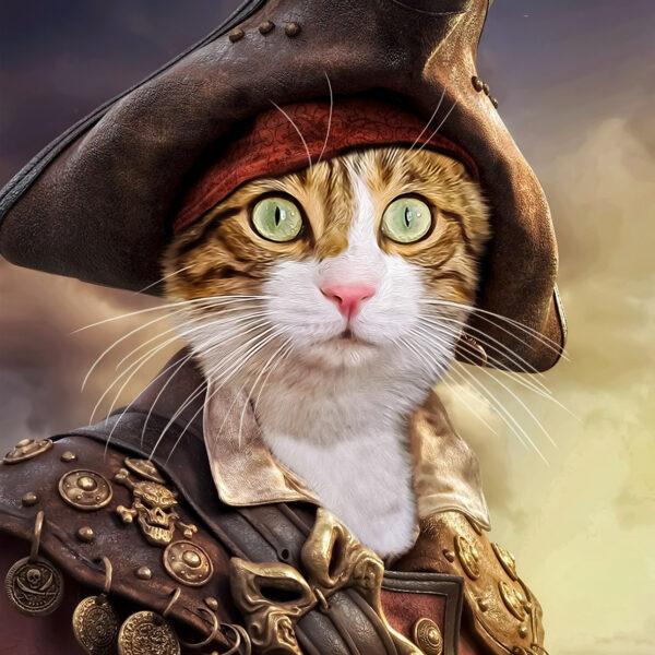 korsan kedi kostümü
