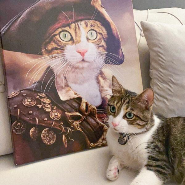 korsan kostümlü kedi