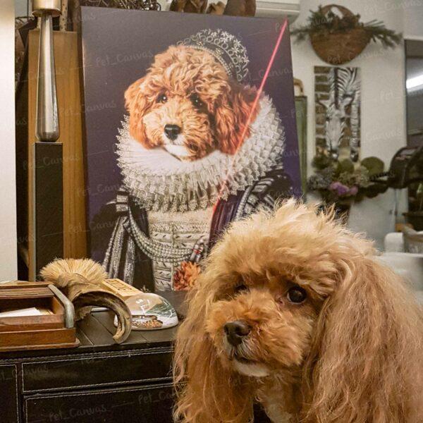 kraliçe poodle pet canvas